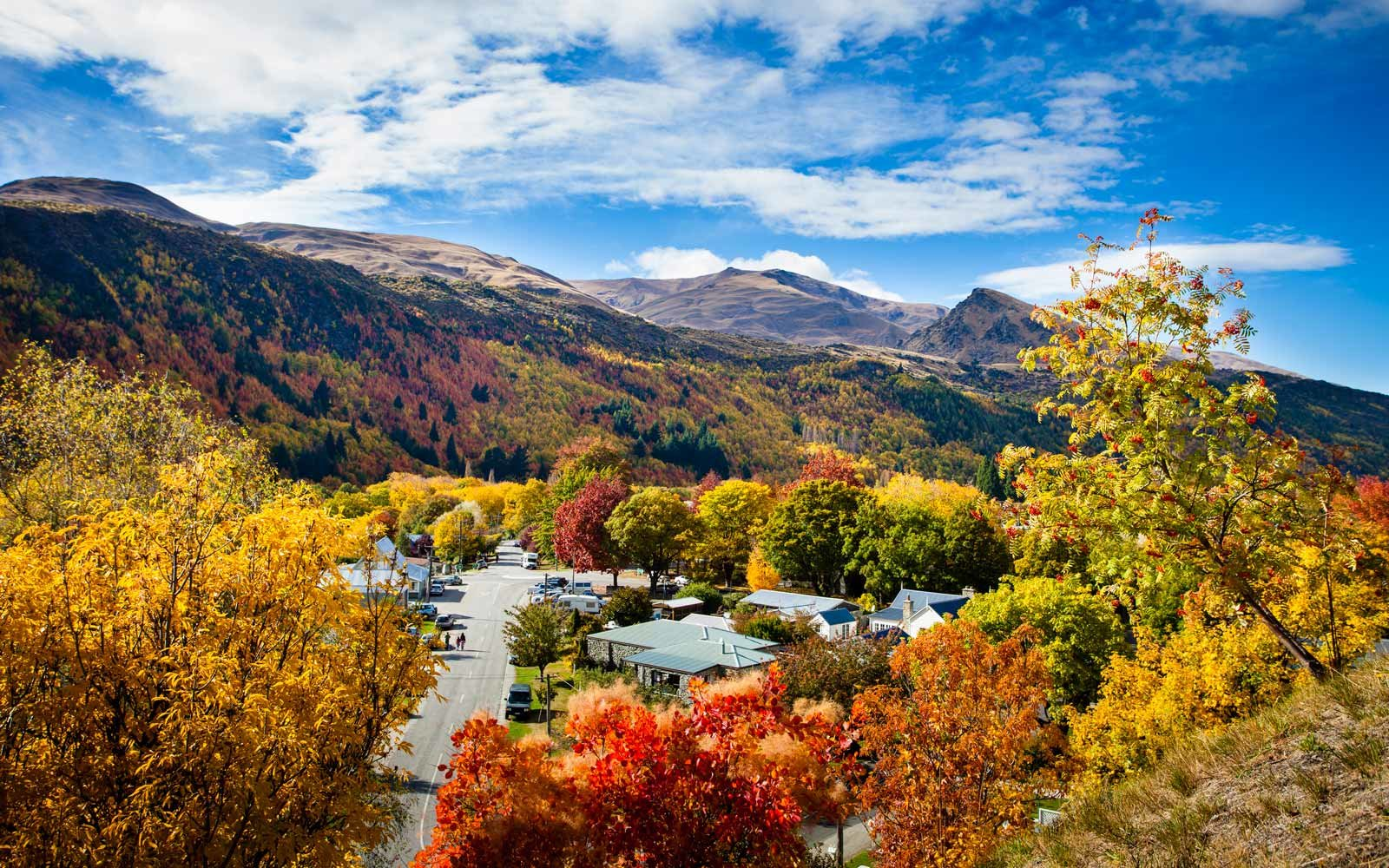 Autumn foliage in Arrowtown, Central Otago, New Zealand