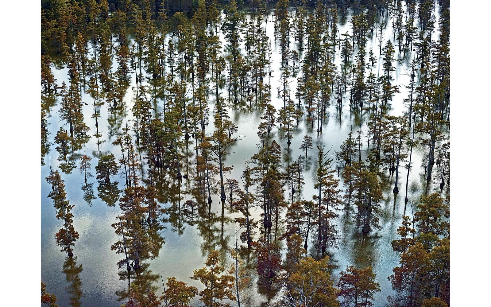 Beaver Dam Lake in Mississippi