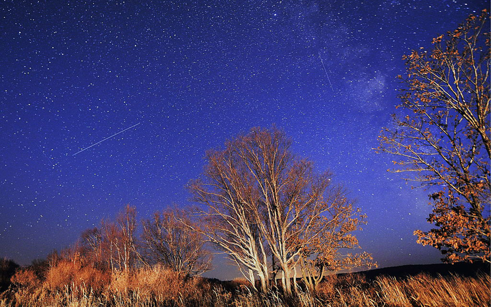 Orionid meteor shower in Russian Far East