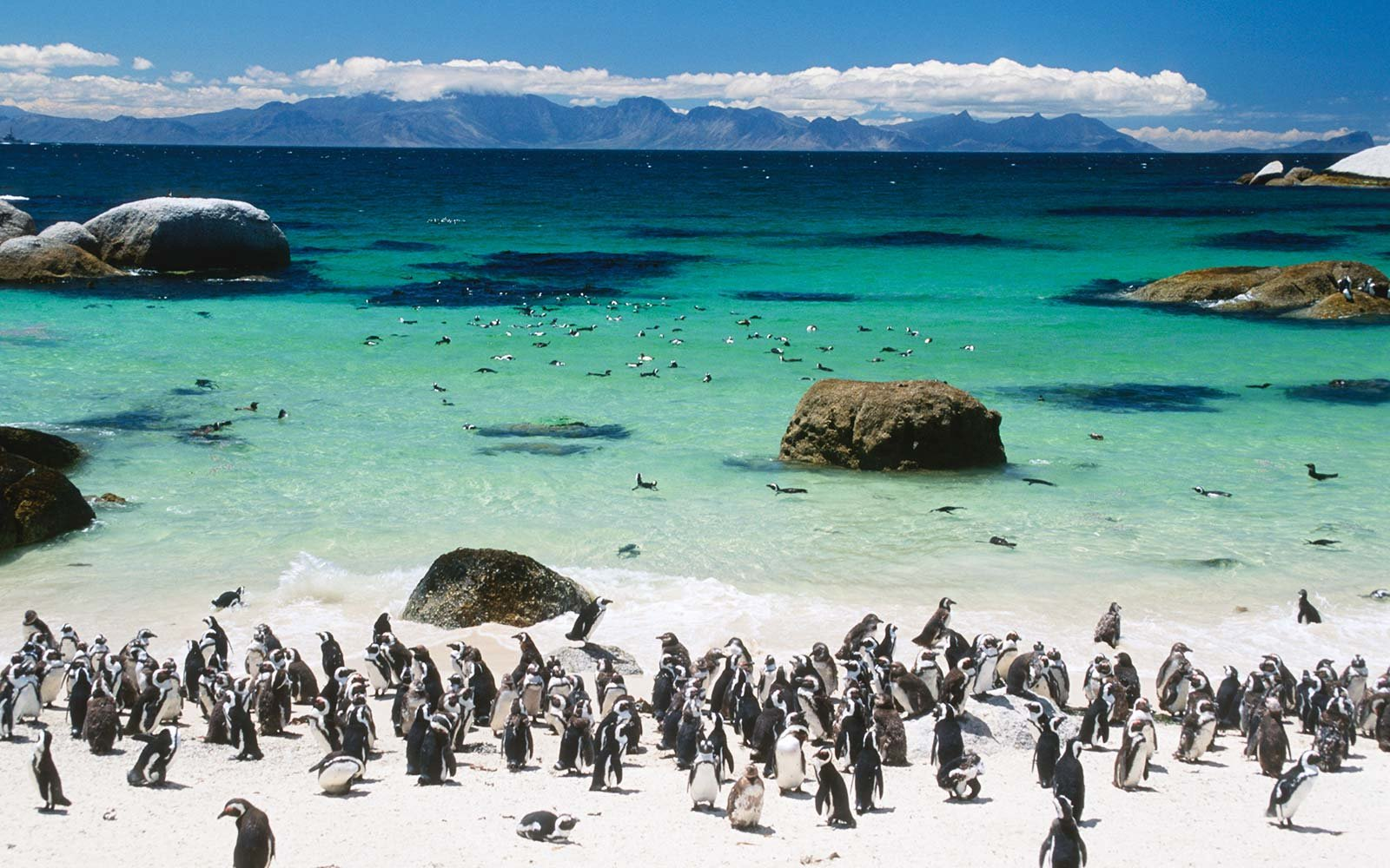 white sand beach boulders south africa