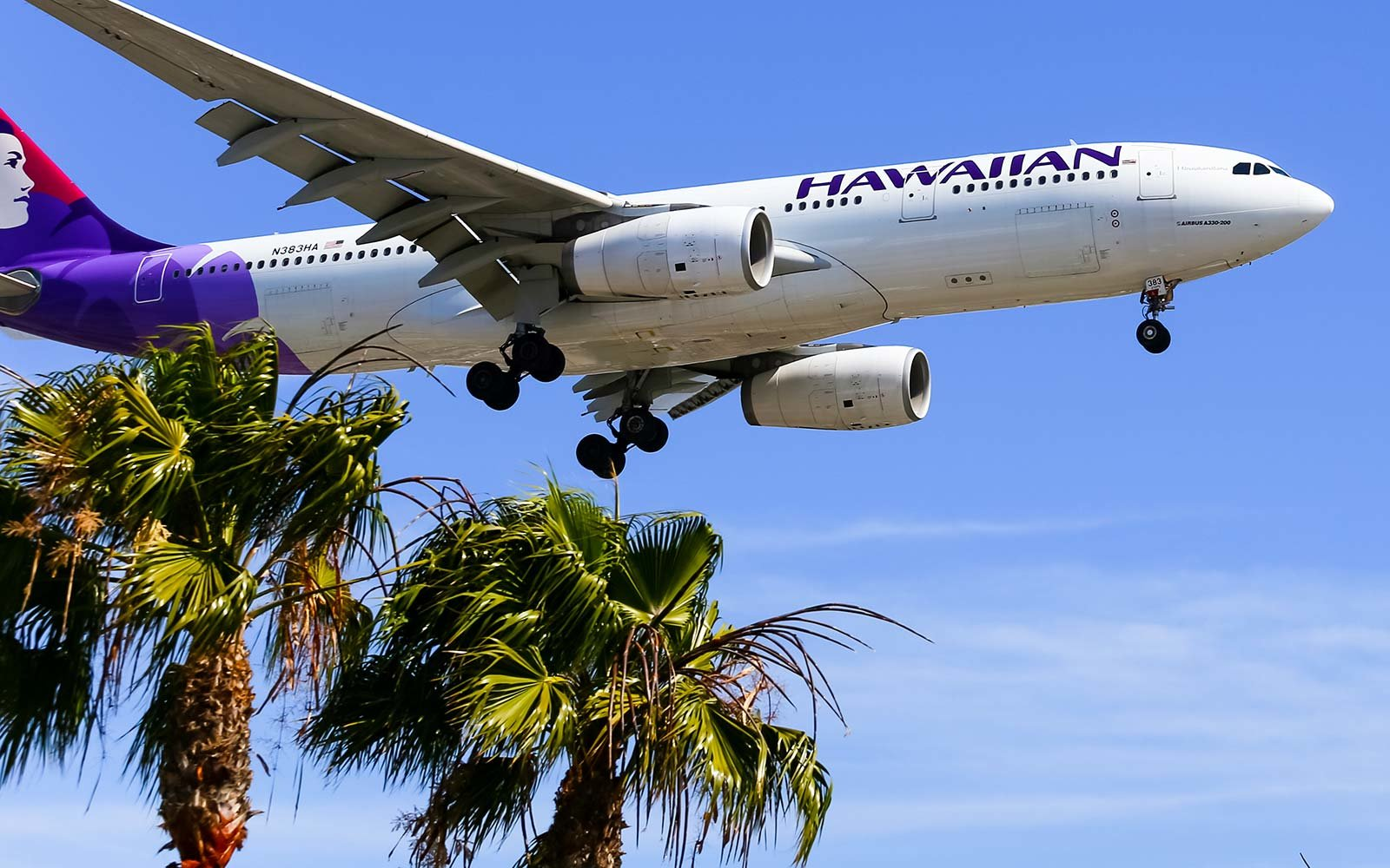 The best airline gift cards for every type of traveler travel hawaiian airlines airplane flight travel gift card xflitez Images