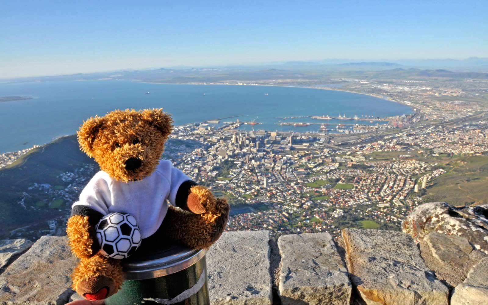 Traveling teddy bear in South Africa