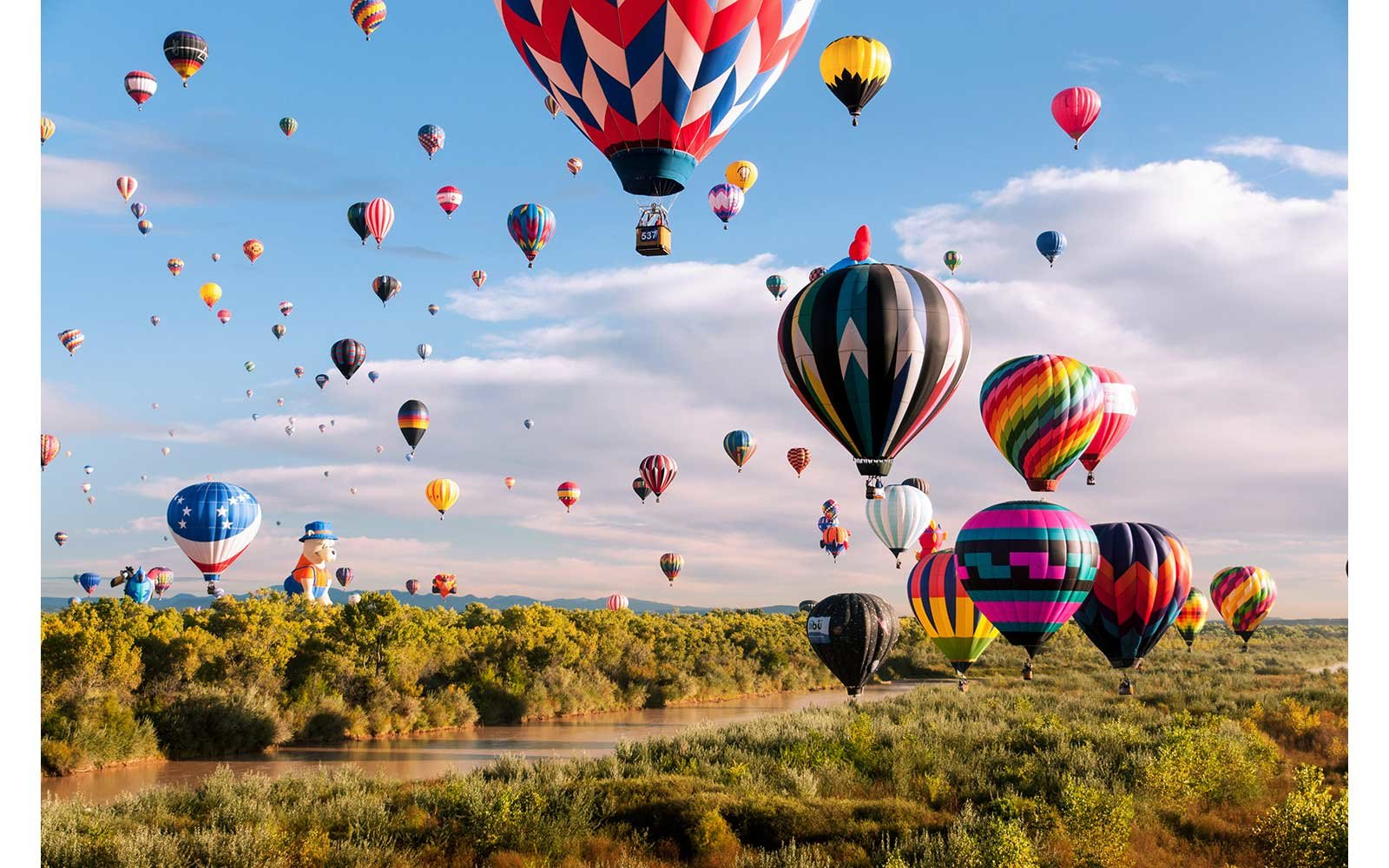 Hot air balloons making a graceful landing