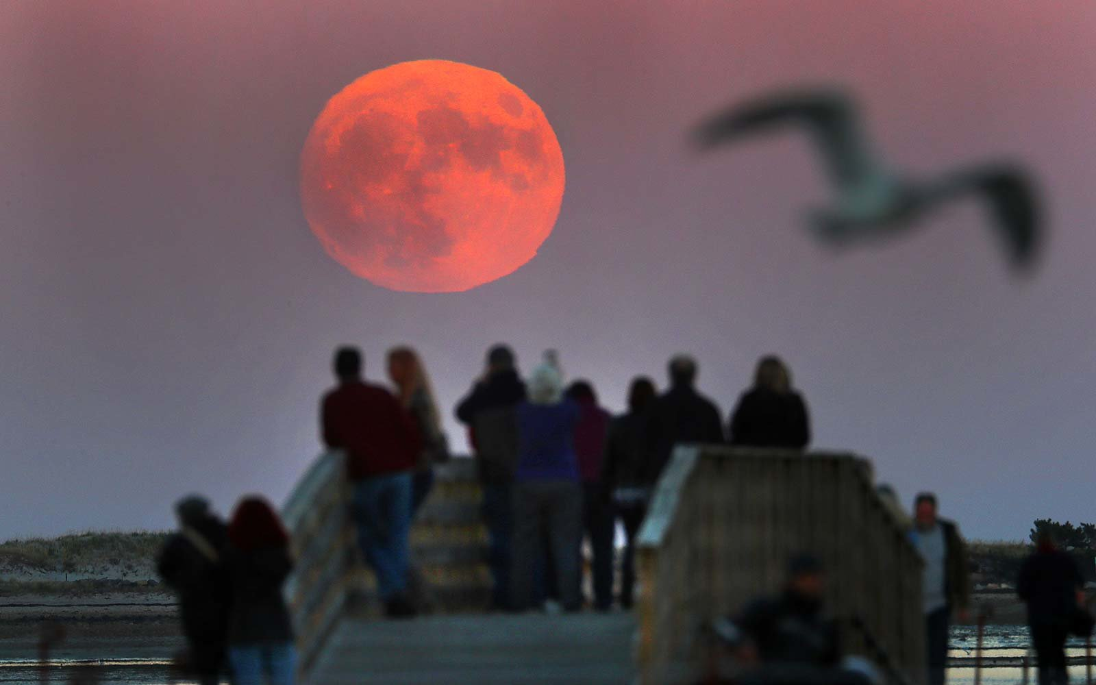 Boston Massachusetts USA viewing Cold Moon Supermoon
