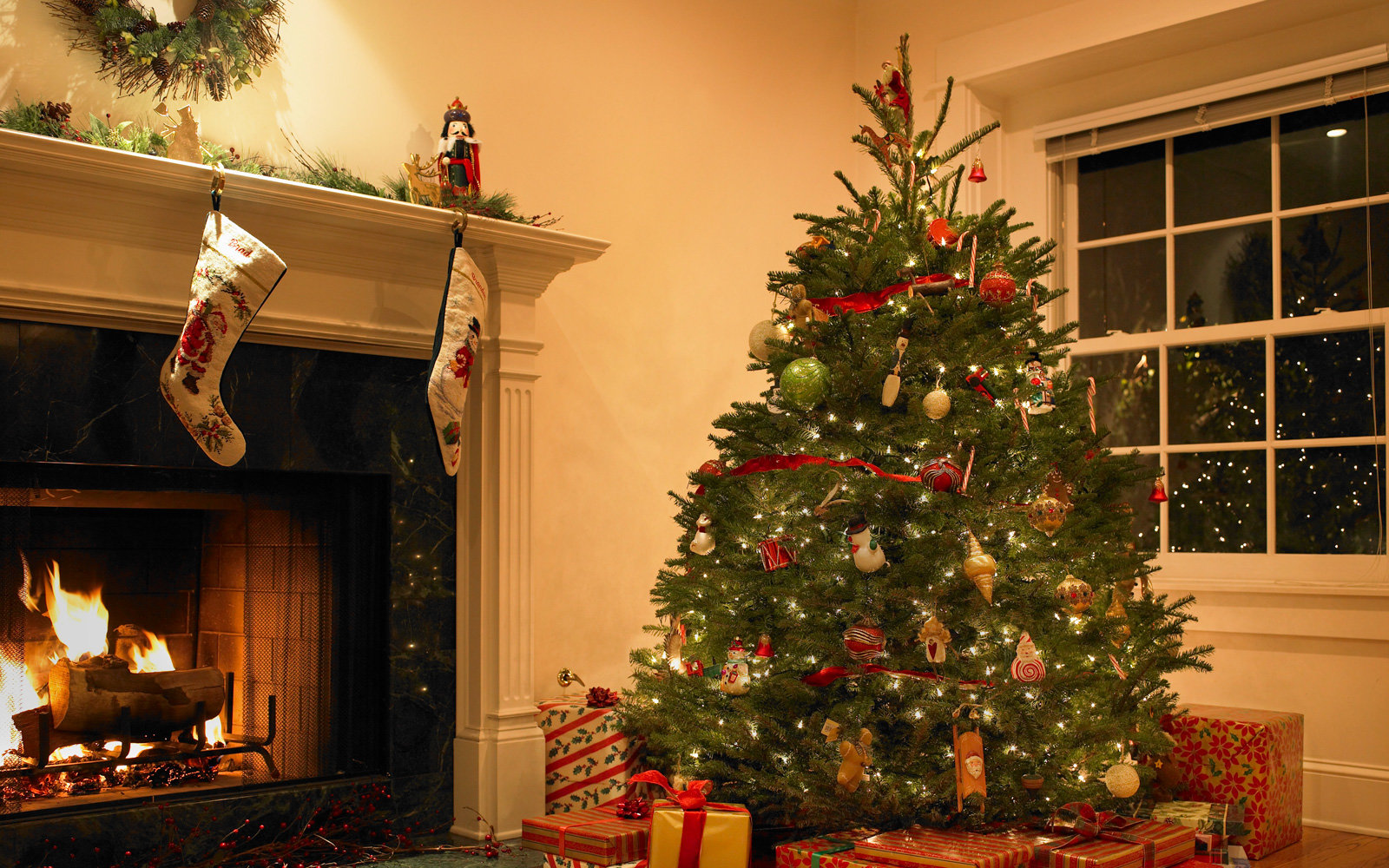 Your Christmas Tree Might Be Covered in Bugs