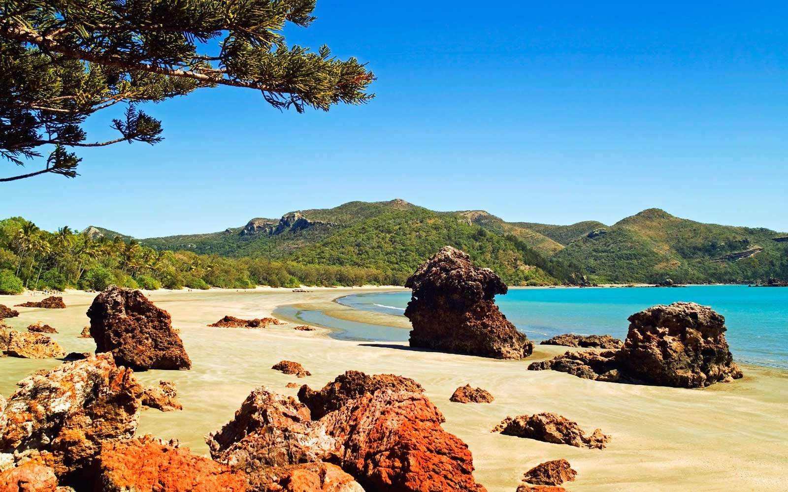 Casuarina Beach in Cape Hillsborough National Park, Queensland, Australia
