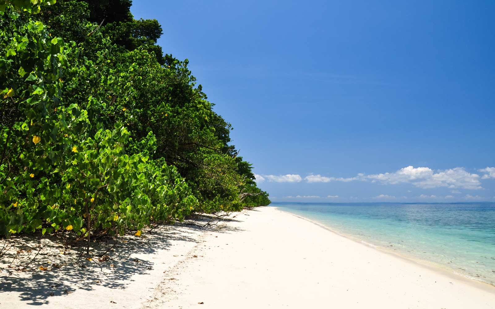 Stunning view of Elephant Beach on Havelock Island.