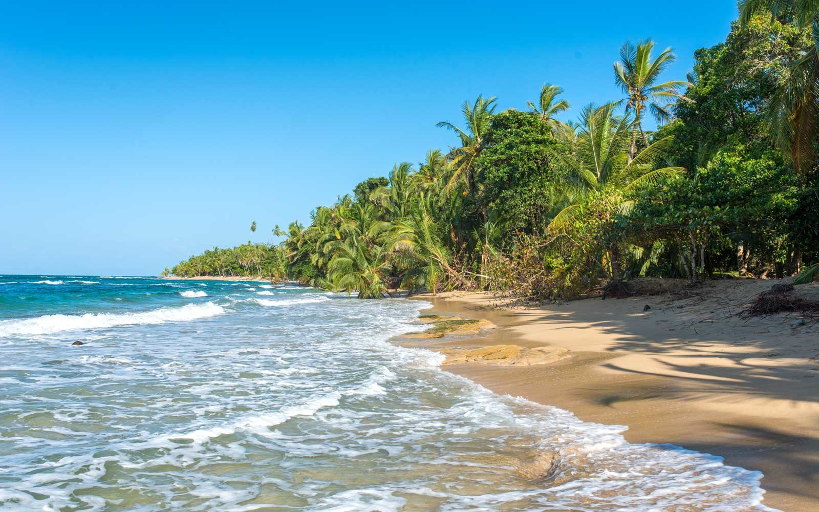 Punta Uva beach in Costa Rica, close to Puerto Viejo, wild and beautiful caribbean coast