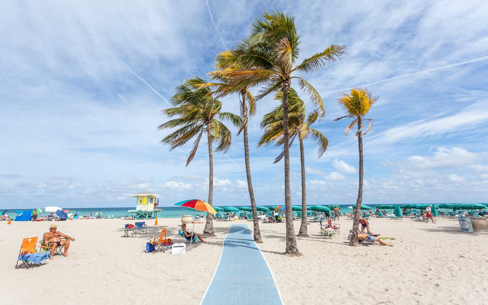 People relaxing under palm trees at the Hollywood Beach on a sunny day in March. Florida, United States