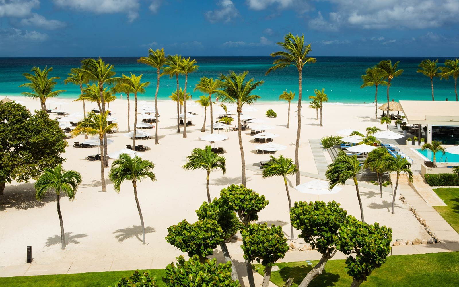 Why Aruba Is the Caribbean Island You Have to Visit in 2018   Travel ...