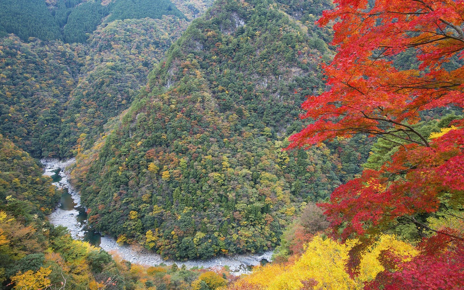 Iya Valley, Japan