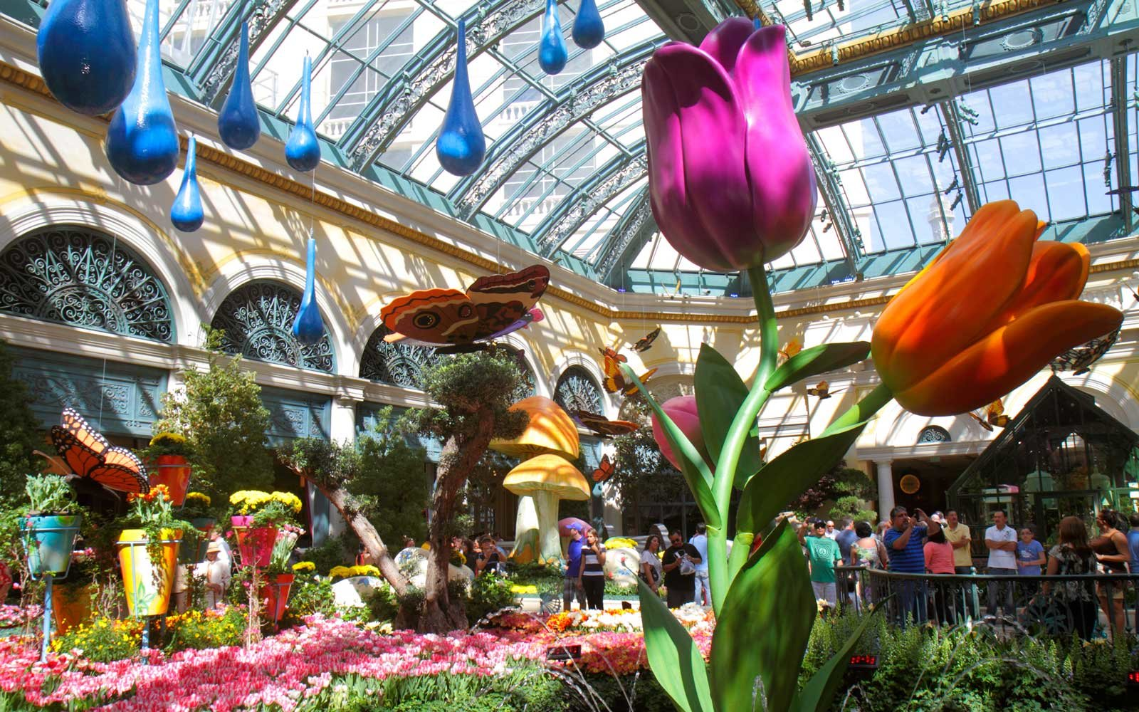 Conservatory & Botanical Gardens at the Bellagio