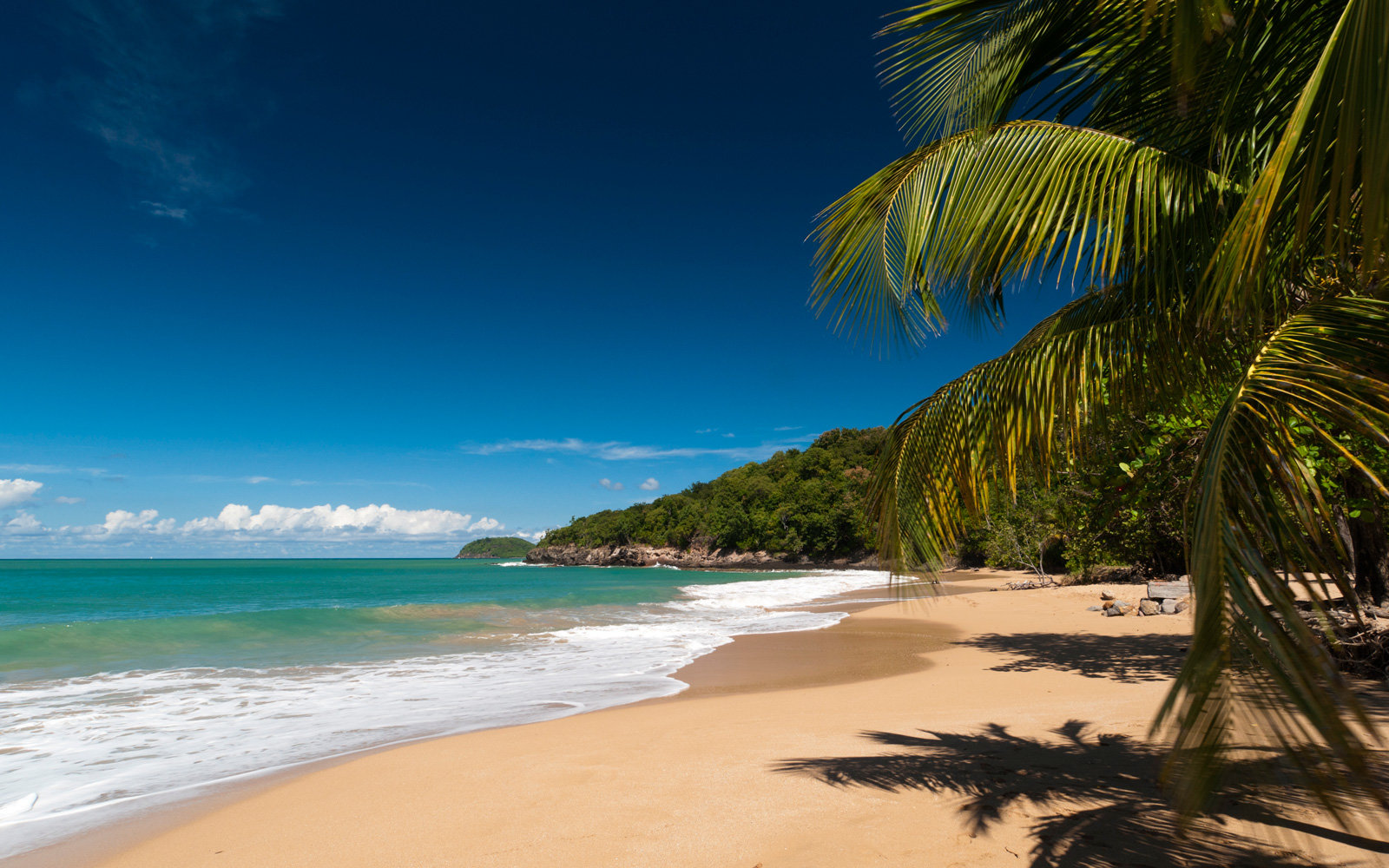 Get a flight to Guadeloupe starting at $59 one-way.