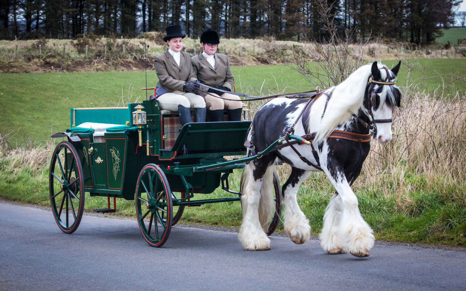 Glenapp Castle horse-drawn carriage