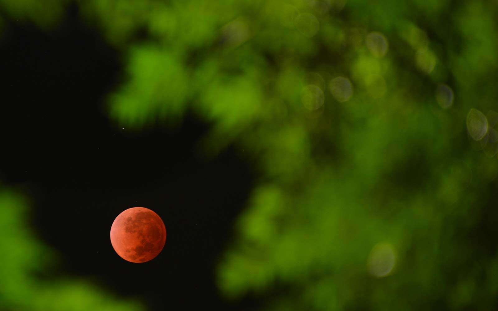 blood moon eclipse ireland - photo #32