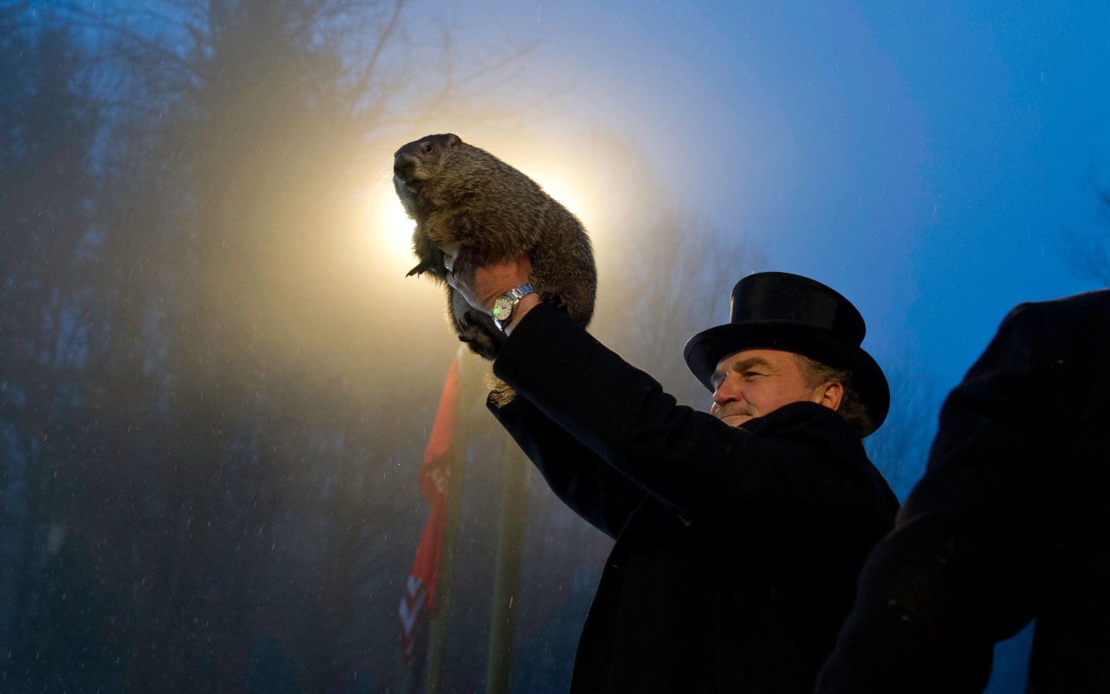 Groundhog doesn't see his shadow, predicting early spring