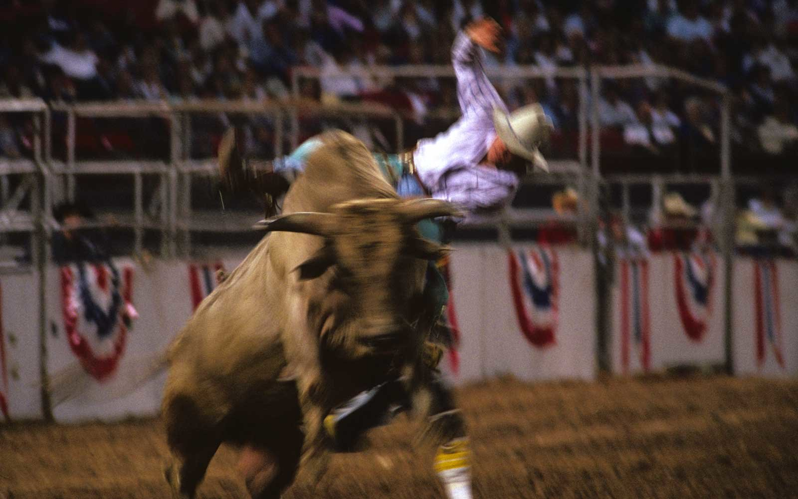 Houston, Texas rodeo