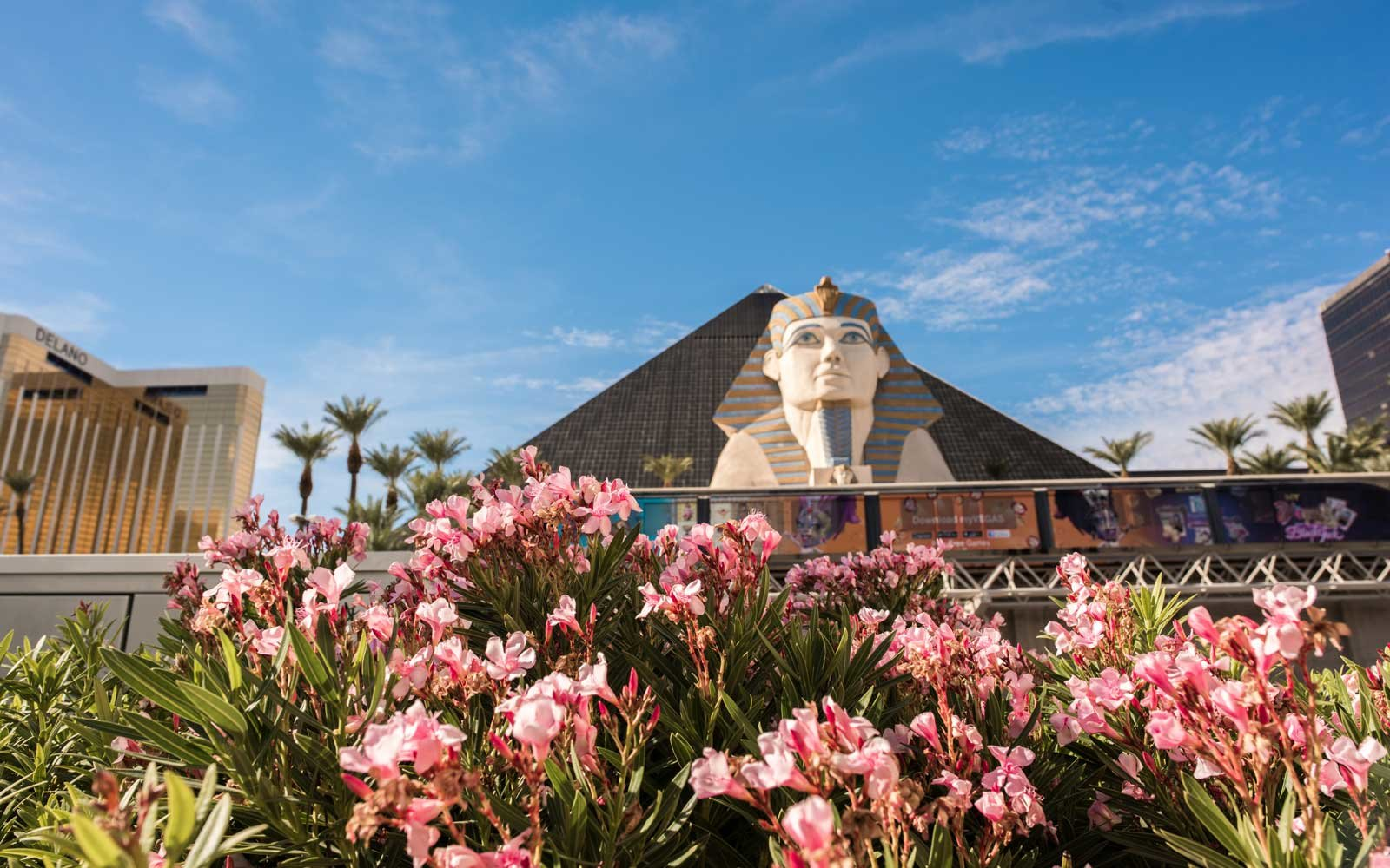 The Luxor Hotel and Casino in Las Vegas