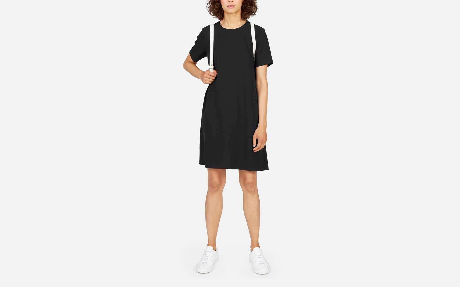 everlane travel dress