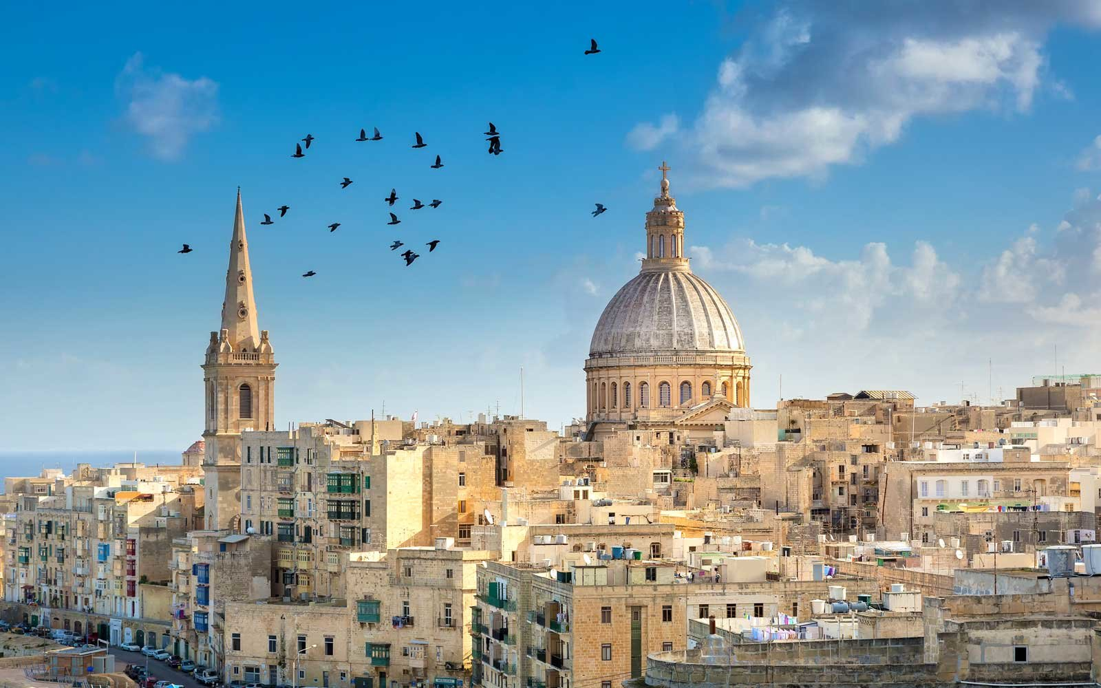 Birds flying over Valetta, Malta