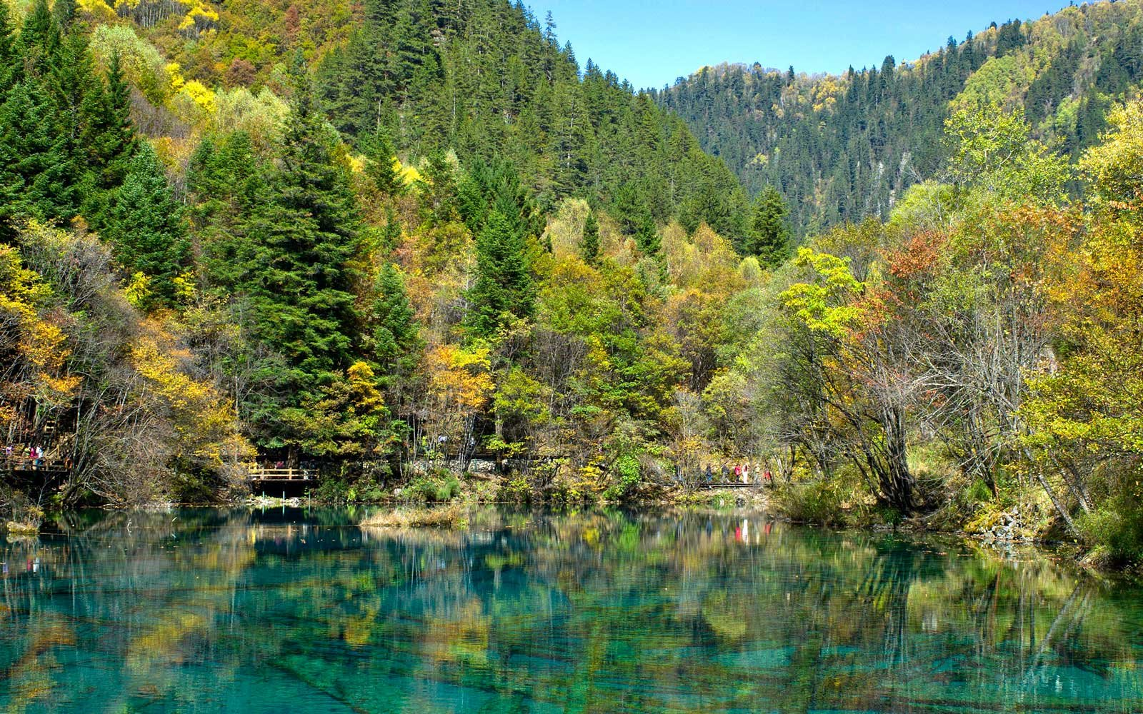 Five-Flower Lake in Jiuzhaigou Nature Reserve, China