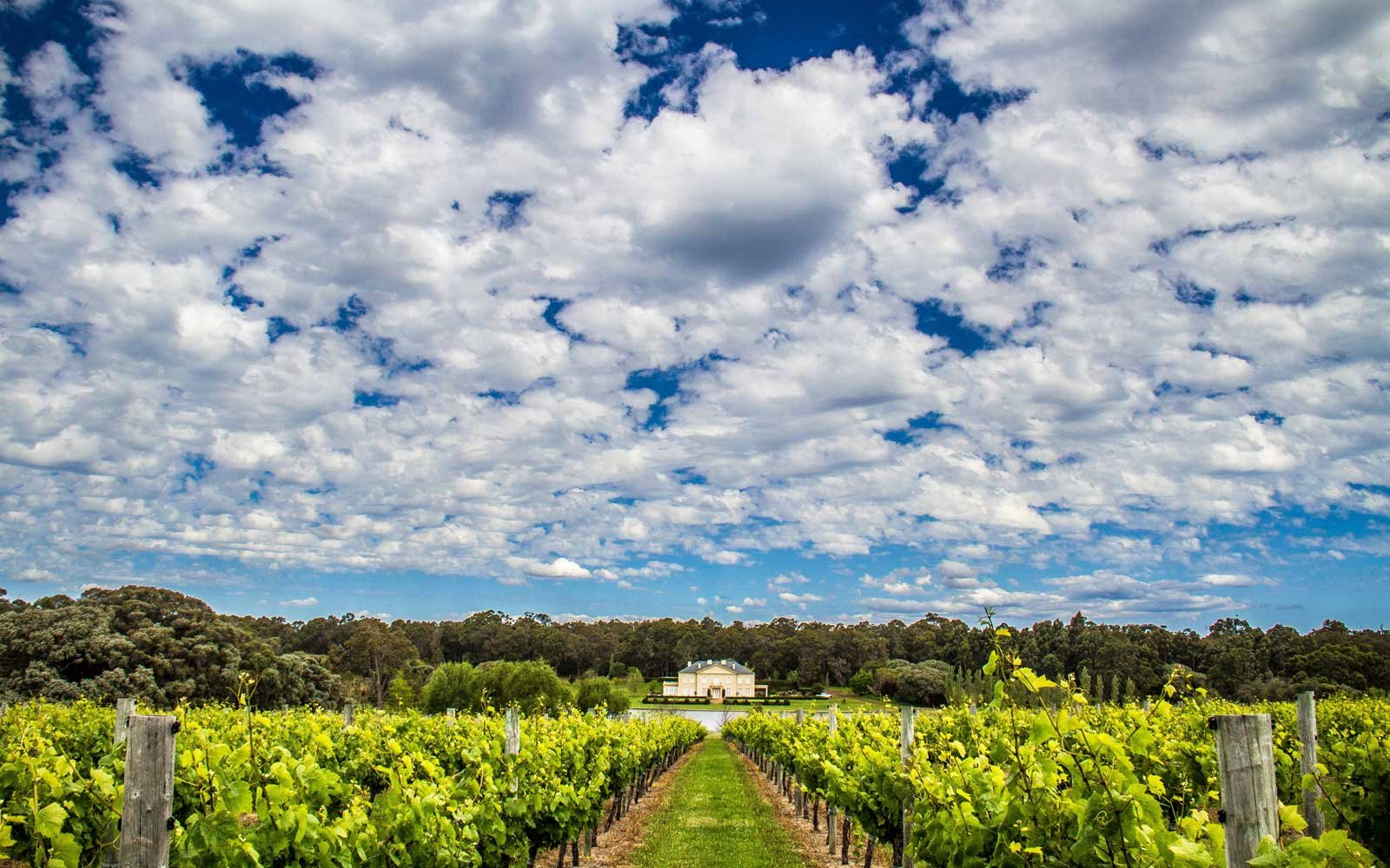 Australia S Been Hiding The Beachy Wine Region Of Your Dreams Travel Leisure