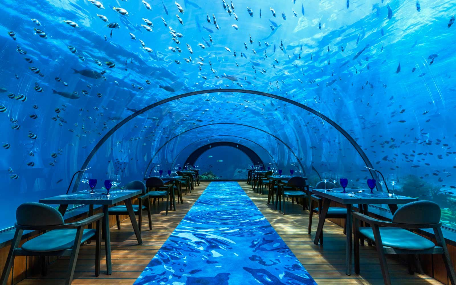 underwater restaurant disney world. Maldives Hurawalhi Underwater Restaurant Disney World