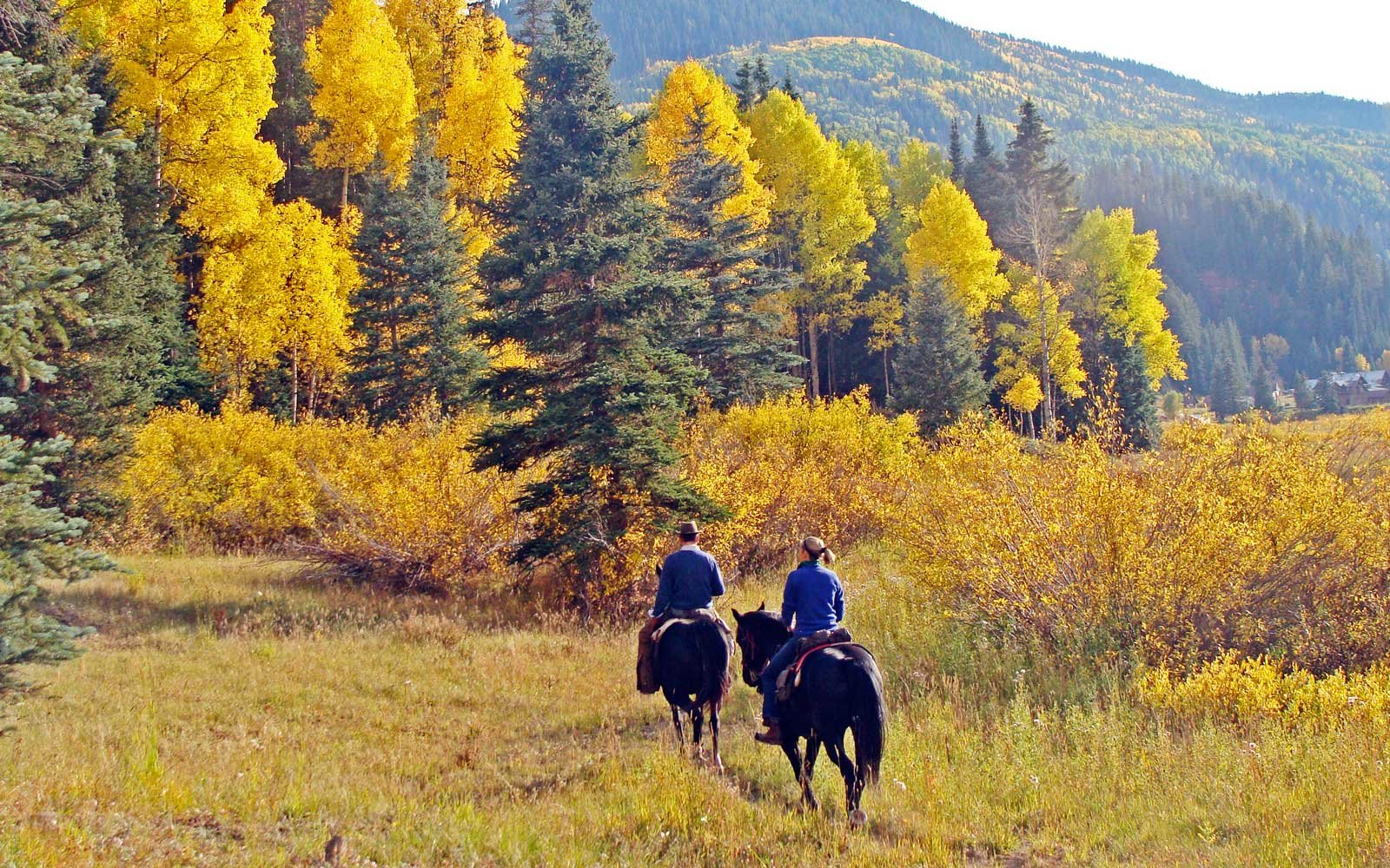 Guests of Dunton Hot Springs riding horses near the property