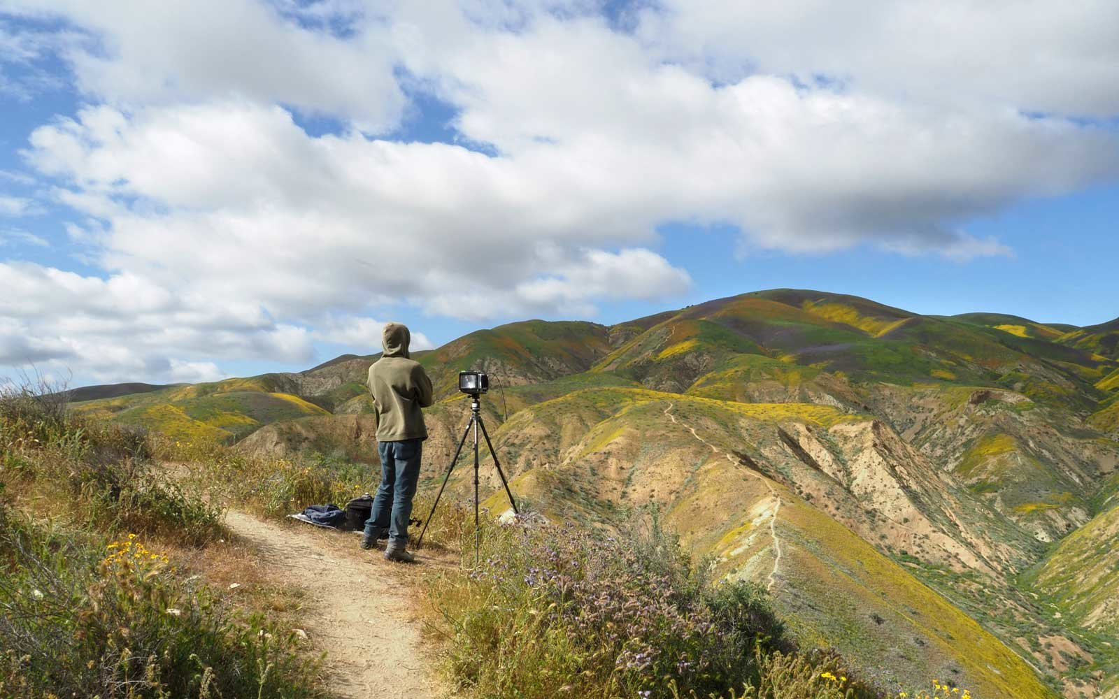 "Photographers wait for the perfect light to shoot the wildflower covered hills of the Tremblor Range in Carrizo Plain National Monument near Taft, California during a wildflower ""super bloom,"" April 12, 2017."