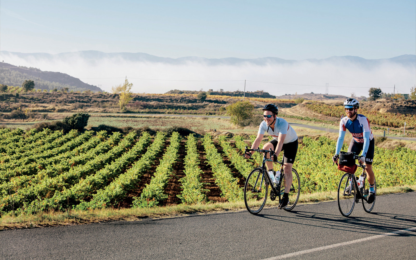 Biking through vineyards in Rioja, Spain