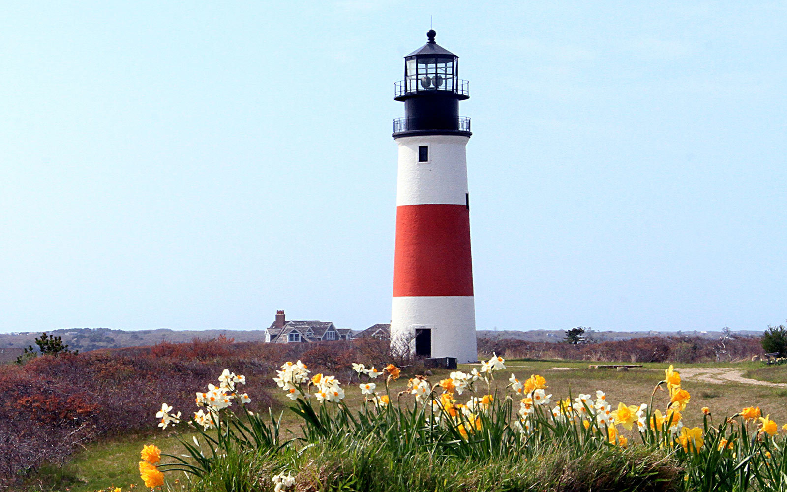 Daffodil Festival on Nantucket, Massachusetts