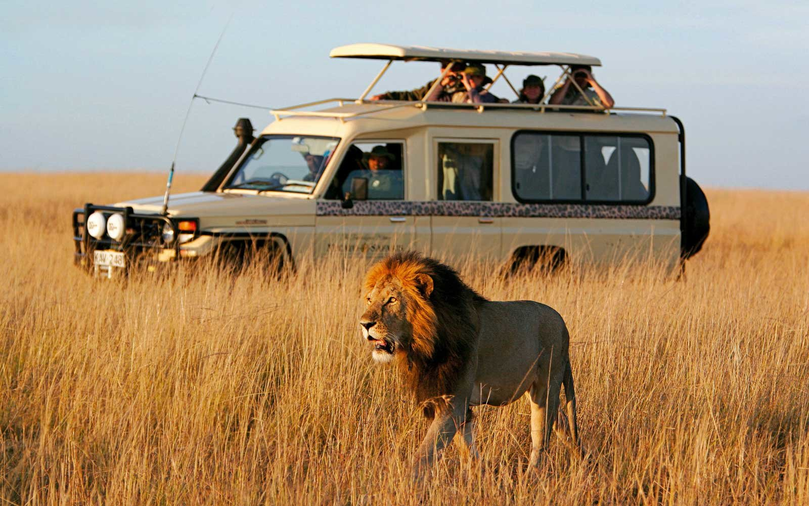 Game drive with Micato Safaris