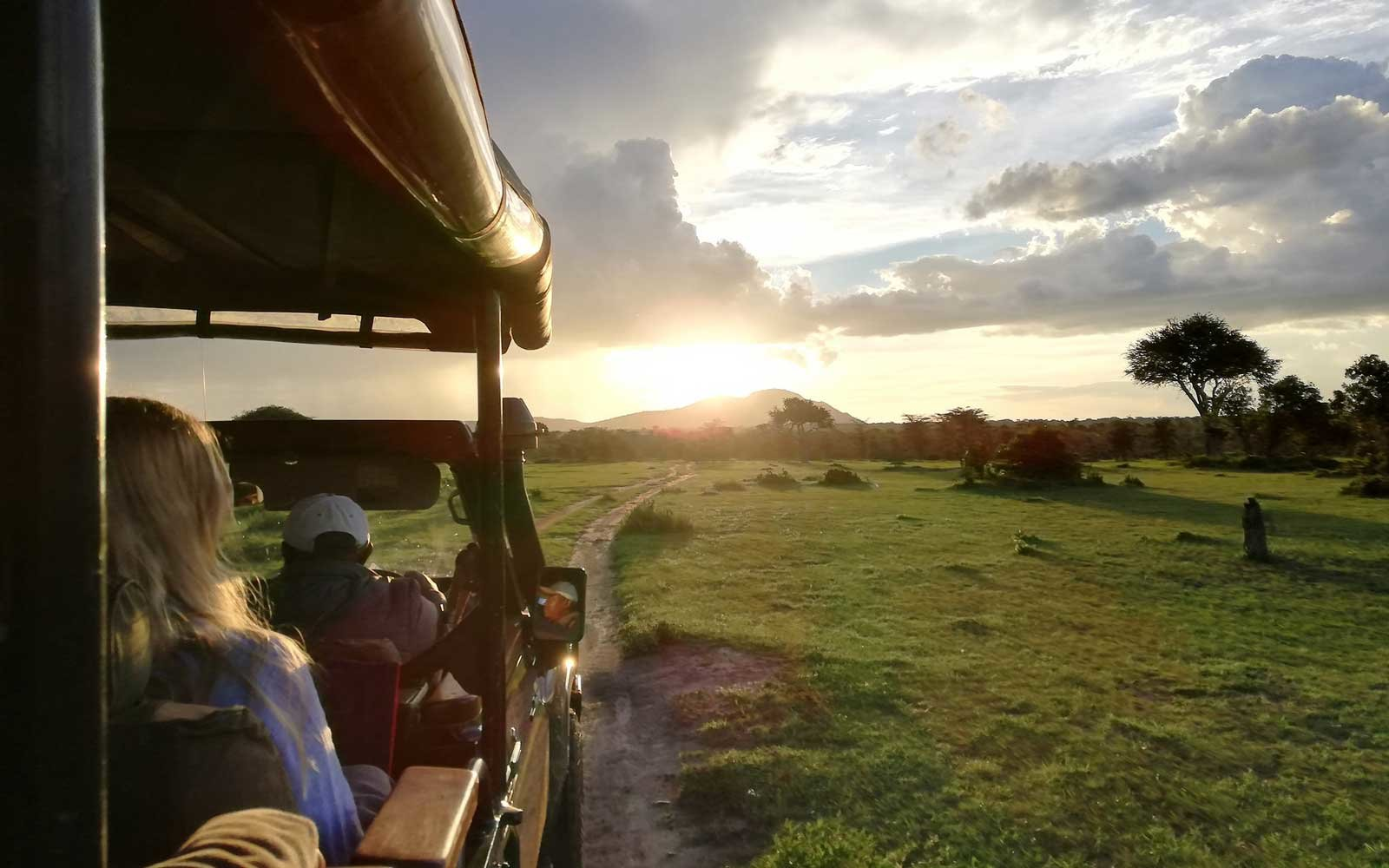 Rothschild Safaris game drive
