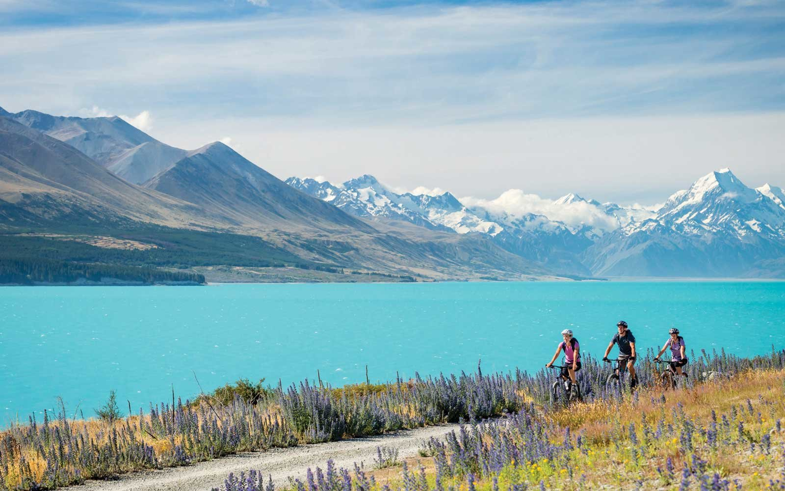 Cycling in New Zealand