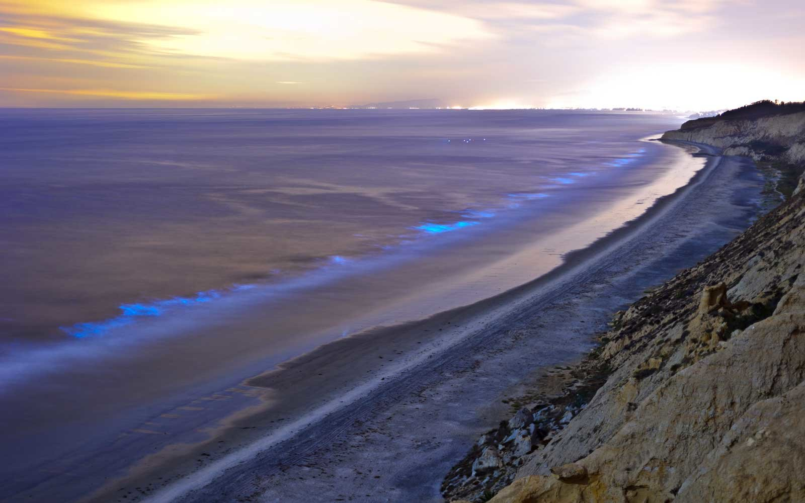 Red tide causing surf to glow in parts of California