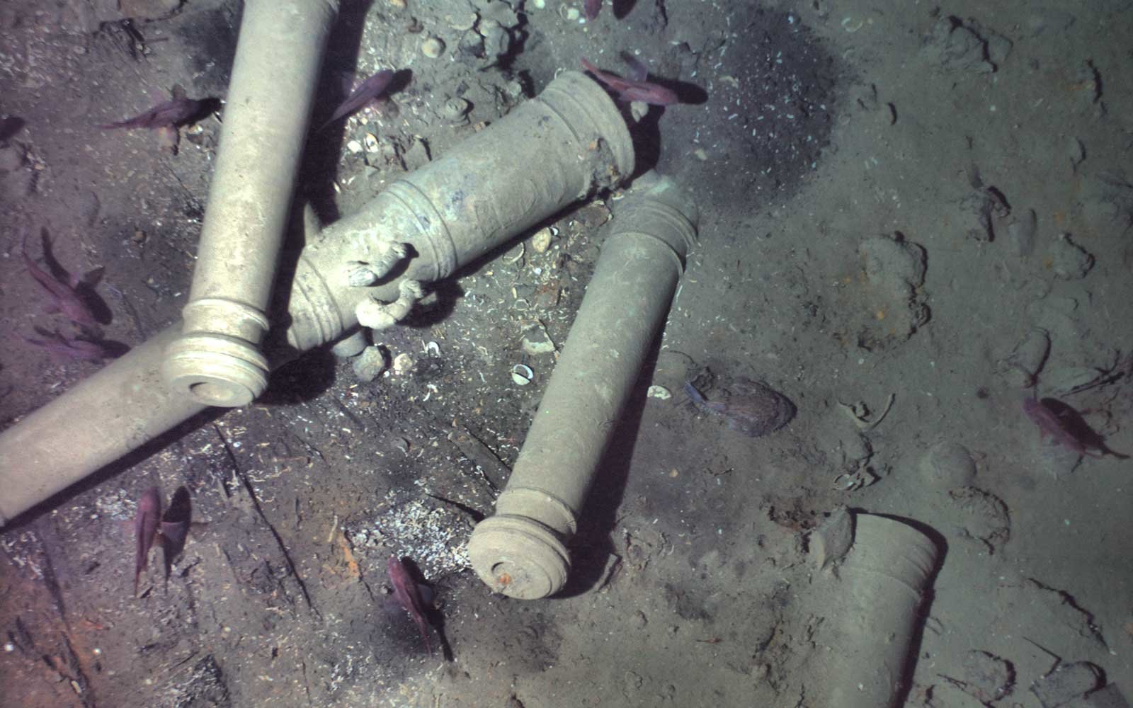 Cannon pile from San Jose Shipwreck in Colombia