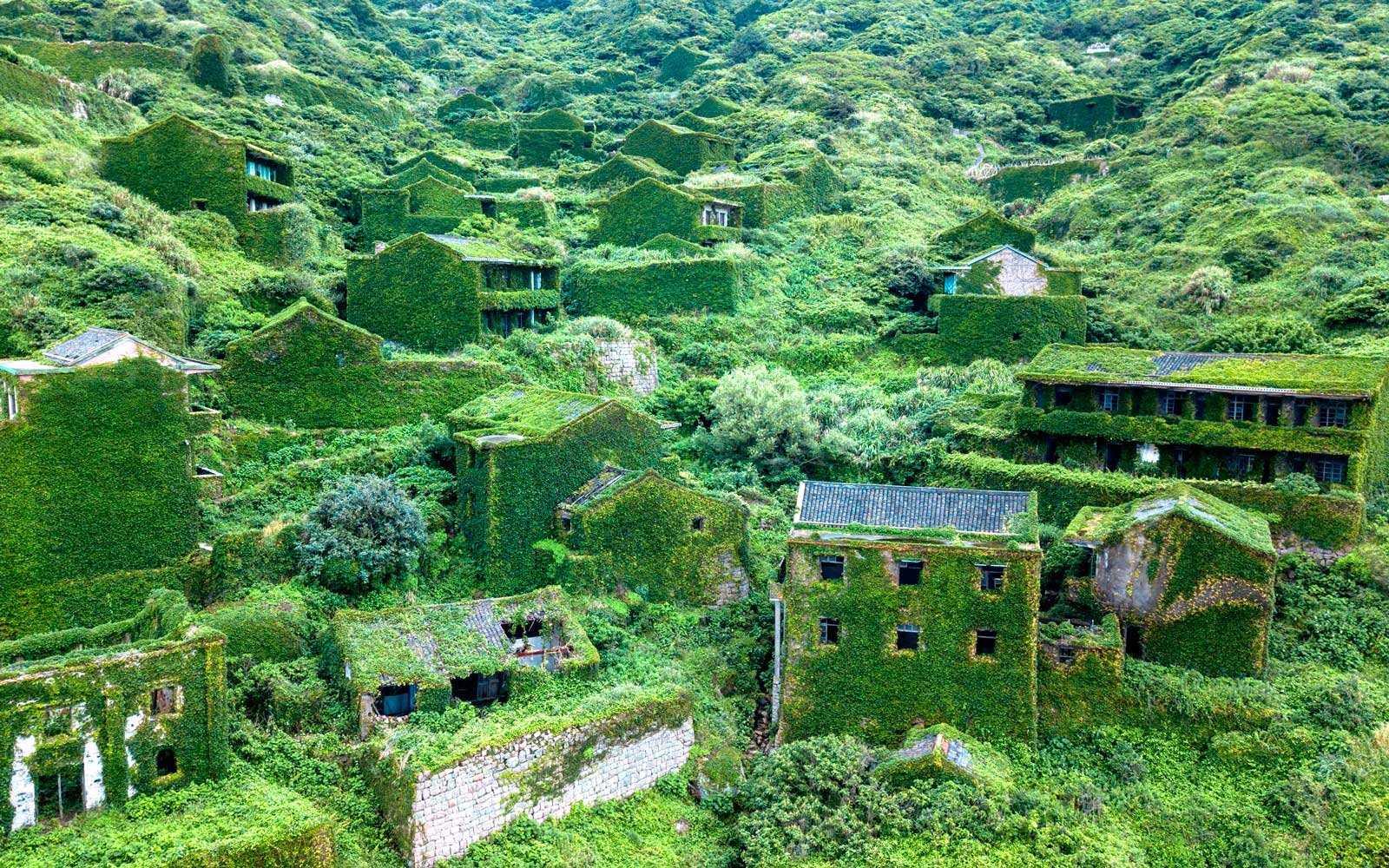 Aerial view of overgrown village in China