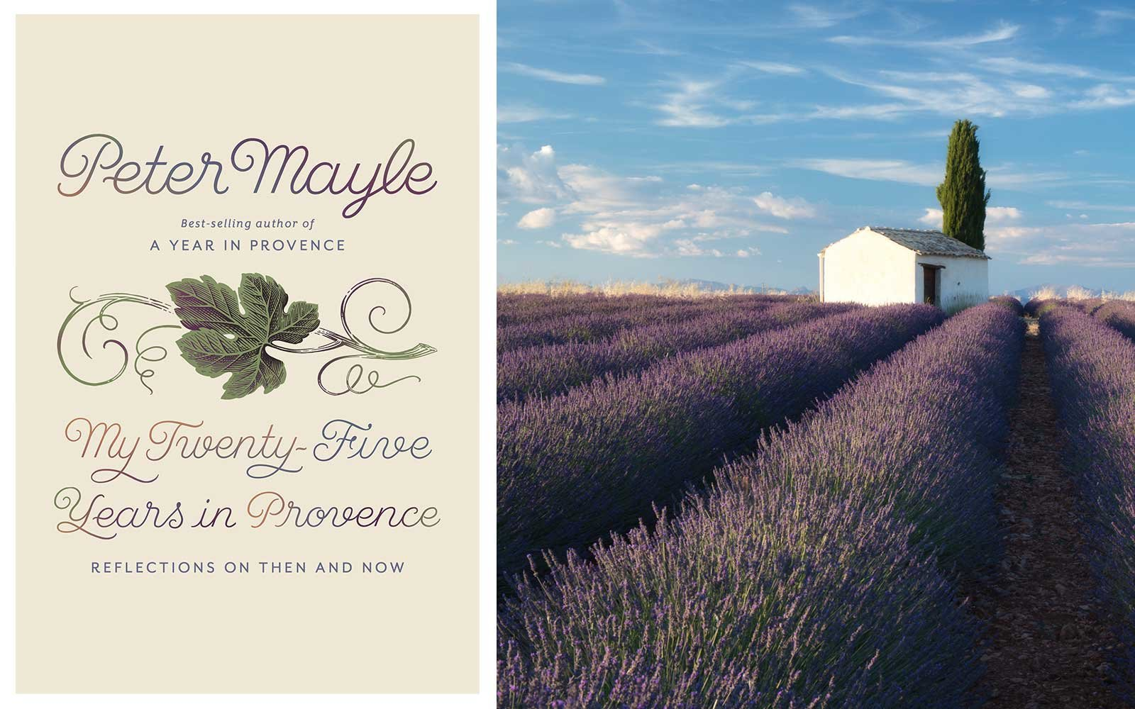 Peter Mayle My Twenty Five Years in Provence book