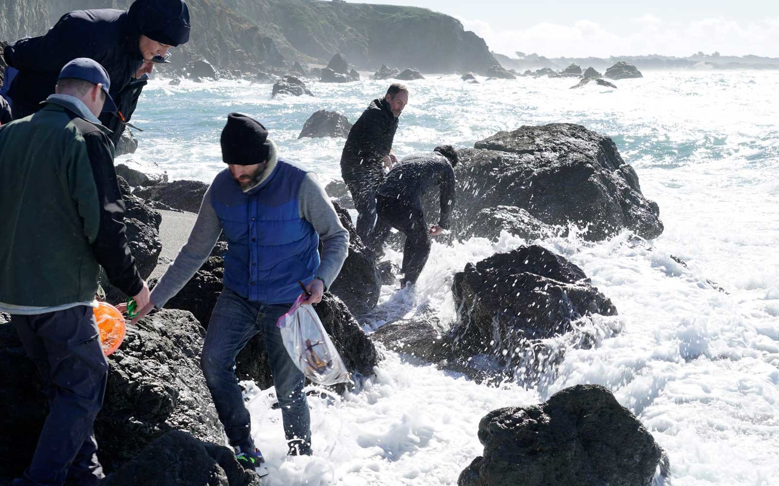 Coastal Foraging, Chef Rupert Blease