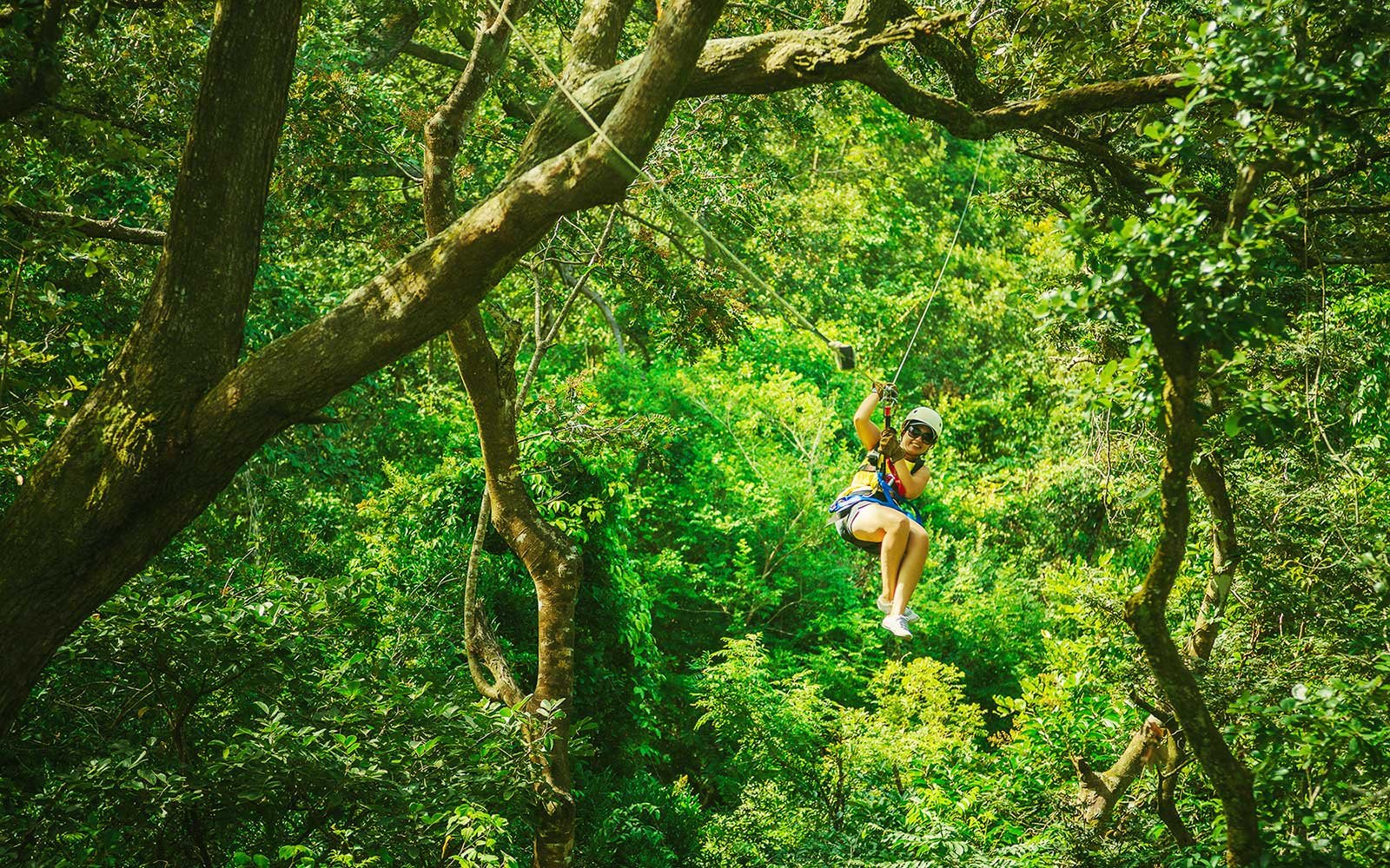 Zip Line in the Rainforest, Costa Rica