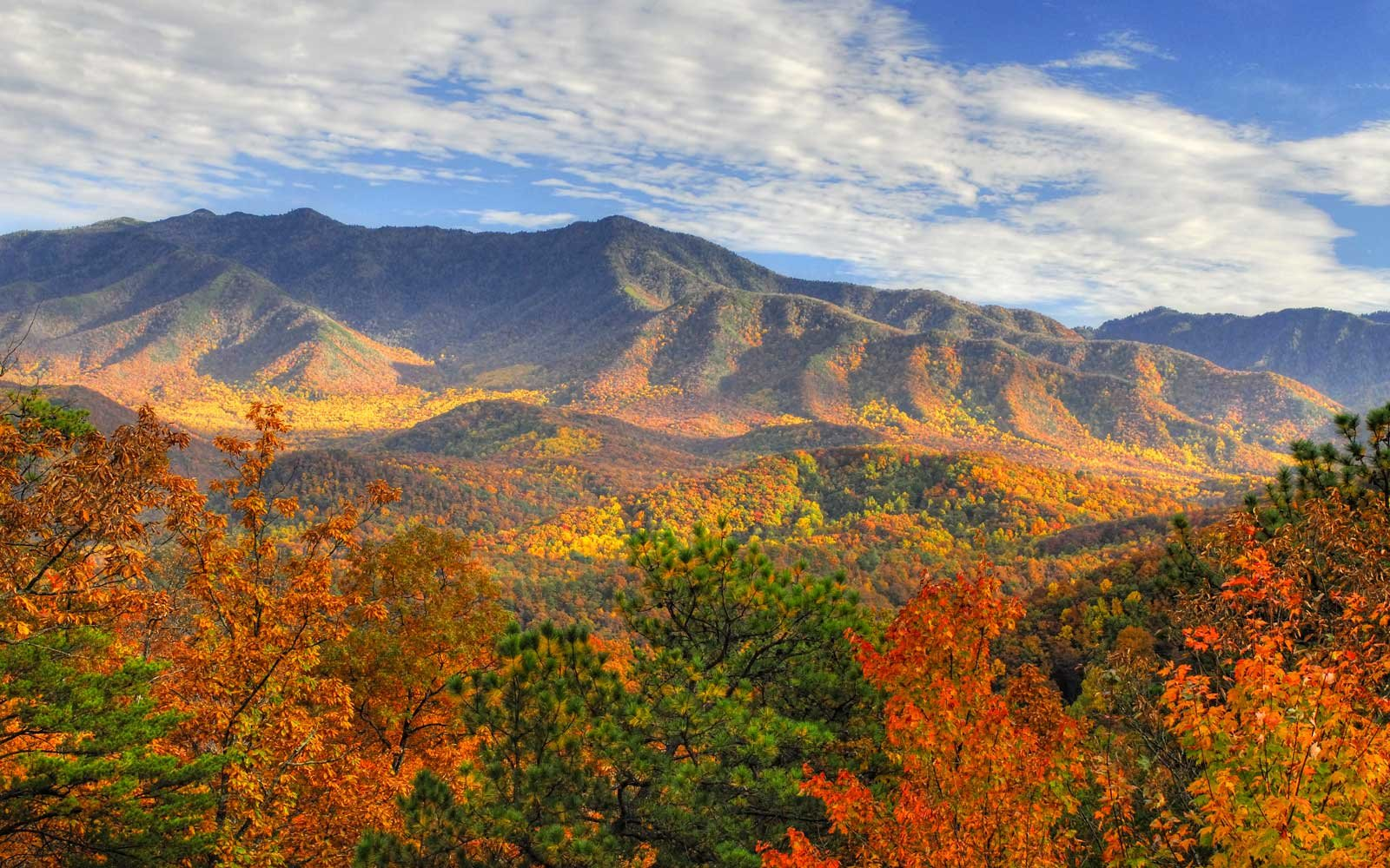 Mount LeConte in autumn, Great Smoky Mountains Ntional Park, Tennessee, USA