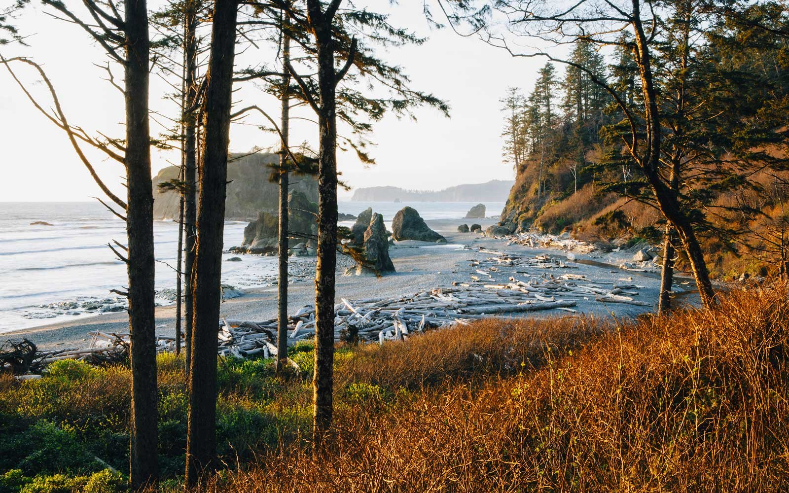 Olympic National Park: Washington