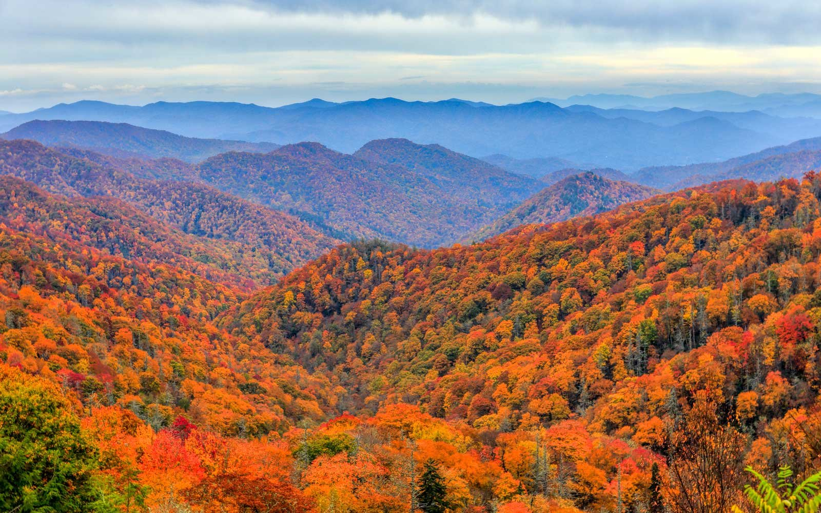 Great Smoky Mountains National Park, North Carolina