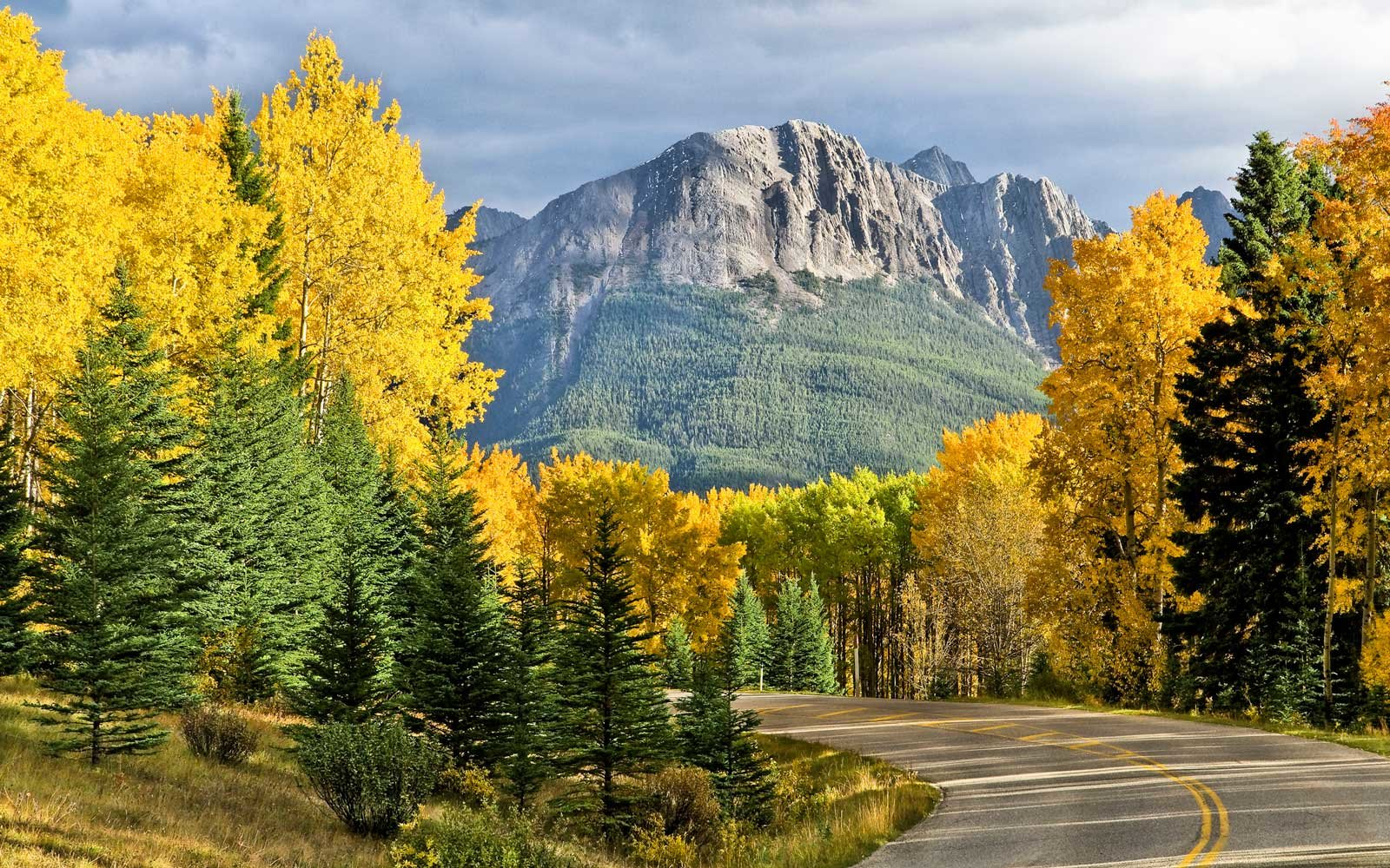 Bow Valley Parkway, Rocky Mountains, Banff National Park, Alberta, Canada