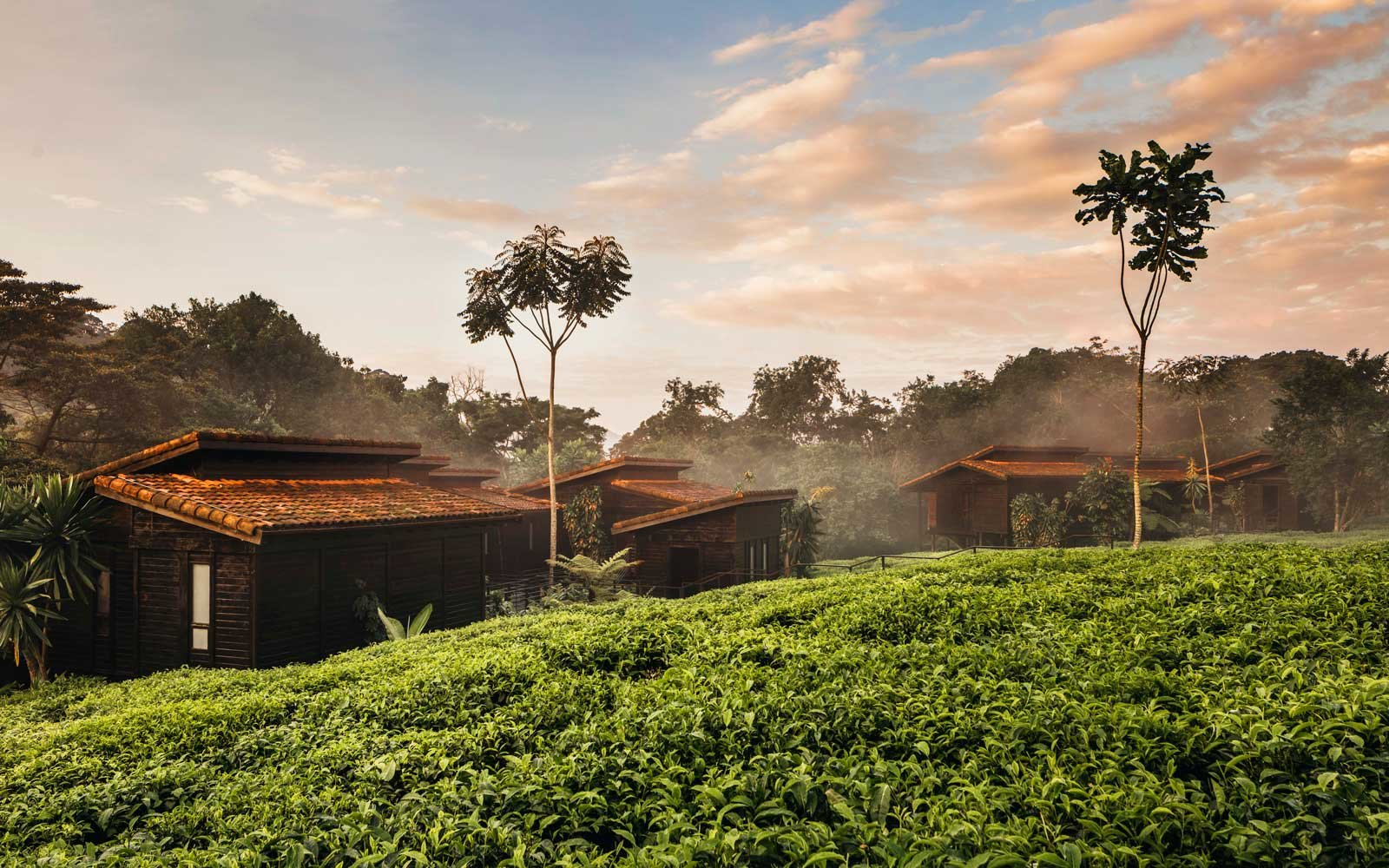 Exterior of the One&Only Nyungwe House in Rwanda