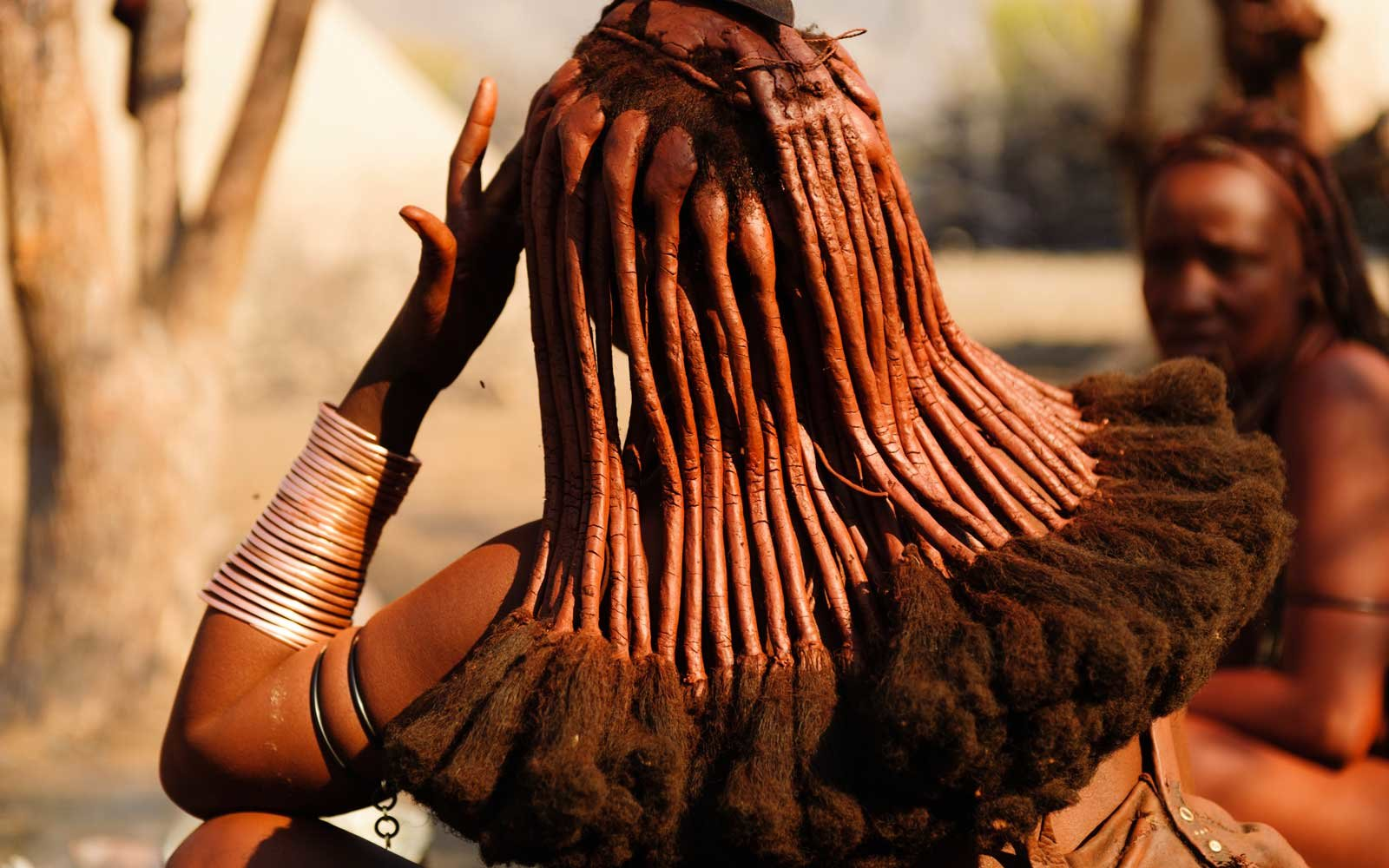 An Himba woman seen from the back with close up on her traditional mud-covered braids