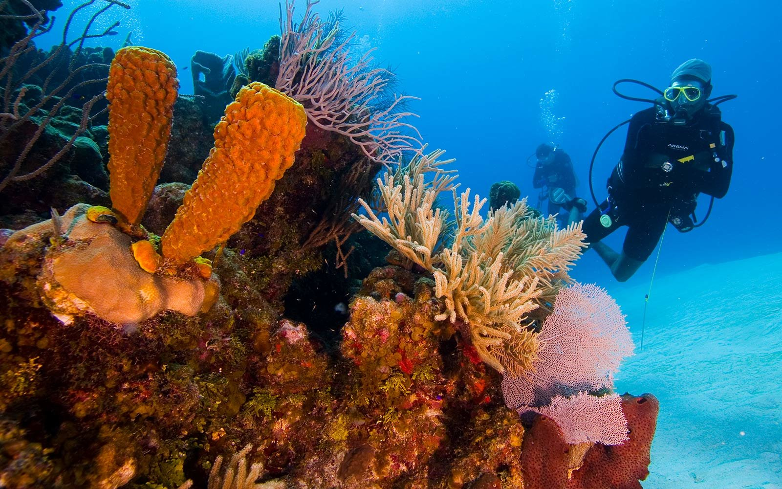 Belize, Scuba Diving