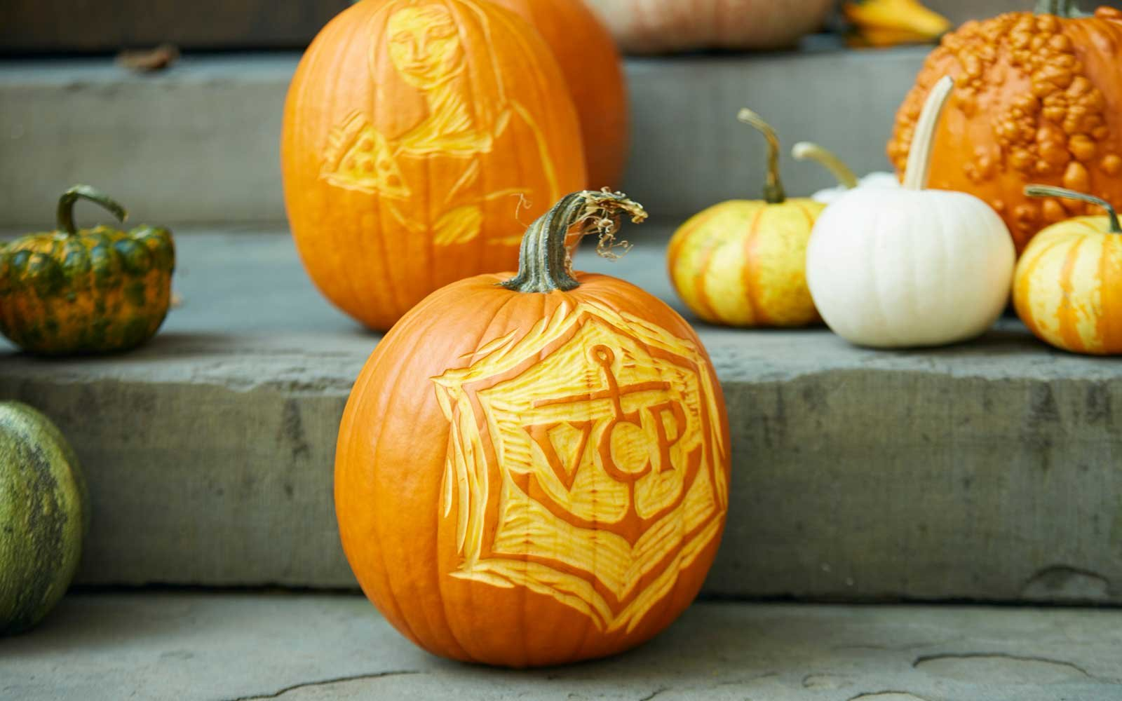 Cool pumpkin carving ideas skip to my lou