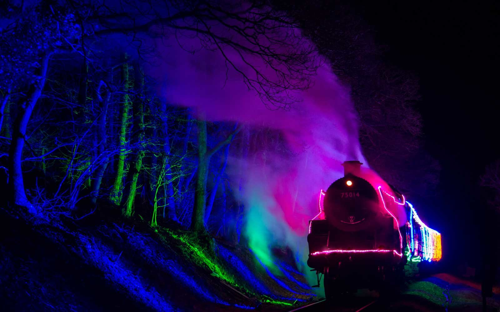 The Train of Lights: Devon, England