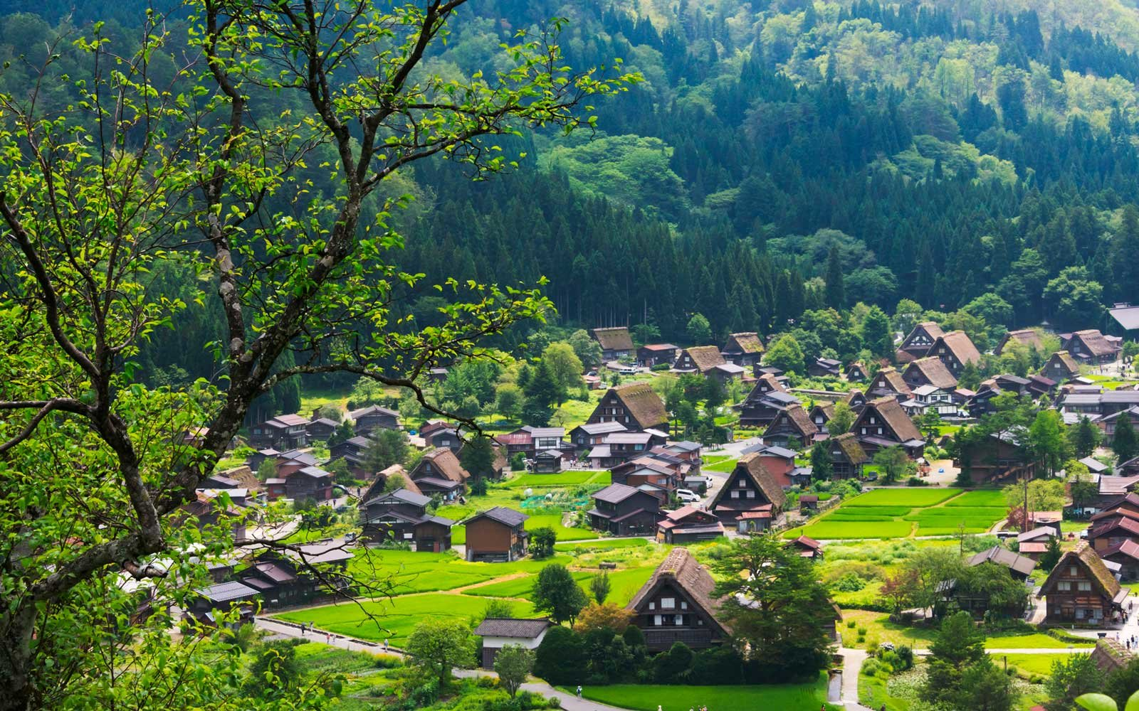 Japan Is Giving Away 8 Million Abandoned Houses — Here's How to Get